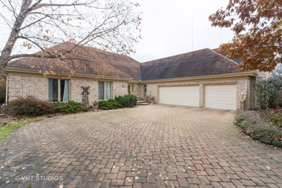 519 Forest Mews Drive, Oak Brook, IL 60523 - #: 10579177