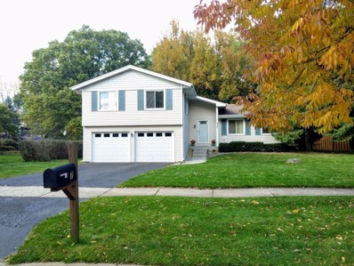 337 Carriage Hill Road, Naperville, IL 60565 - #: 10579427