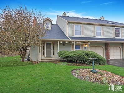 1461 Queensgreen Court, Naperville, IL 60563 - #: 10579981