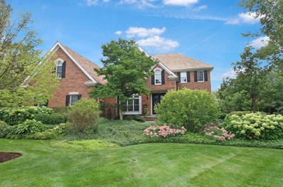 1219 ASHBURY Lane, Libertyville, IL 60048 - #: 10580112