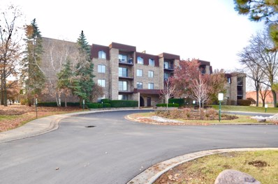 2050 Valencia Drive UNIT 216C, Northbrook, IL 60062 - #: 10581247