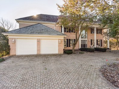 10627 Misty Hill Road, Orland Park, IL 60462 - #: 10581864