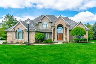 24725 W Manor Drive, Shorewood, IL 60404 - #: 10582278