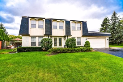 20 Country Court, Deerfield, IL 60015 - #: 10582930