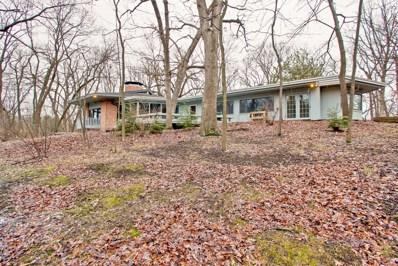 21434 W Oak Trail, Kildeer, IL 60047 - #: 10582963