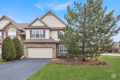24802 Ironwood Court, Plainfield, IL 60585 - #: 10583076
