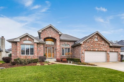 17359 Deer Point Drive, Orland Park, IL 60467 - #: 10583196