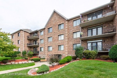 11035 Deblin Lane UNIT 205, Oak Lawn, IL 60453 - #: 10584617