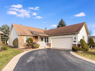13710 S Cottonwood Lane, Plainfield, IL 60544 - #: 10584869