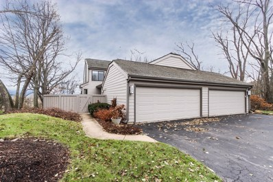 480 Valley View Road, Lake Barrington, IL 60010 - #: 10585068