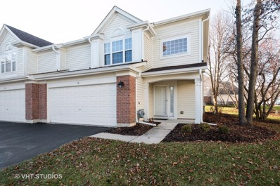 16 Meadow Court, Schaumburg, IL 60193 - #: 10585884