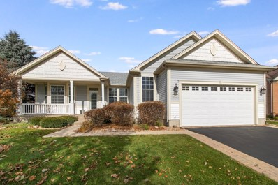 12562 Pheasant Ridge Drive, Huntley, IL 60142 - #: 10587710