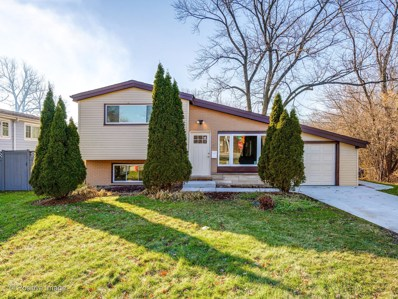 800 Fair Lane, Northbrook, IL 60062 - #: 10588238