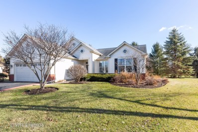 12407 Black Oak Trail, Huntley, IL 60142 - #: 10591094