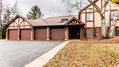 1760 Plymouth Court UNIT A, Wheaton, IL 60189 - #: 10591237