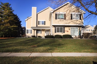 609 Silver Creek Road UNIT 609, Woodstock, IL 60098 - #: 10592009