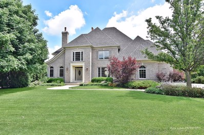 3N965  Emily Dickinson, St. Charles, IL 60175 - #: 10594773