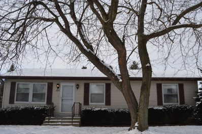 393 10th Street, Mazon, IL 60444 - #: 10594863