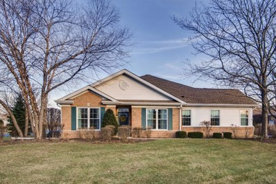 13501 S Butternut Court, Plainfield, IL 60544 - #: 10595104