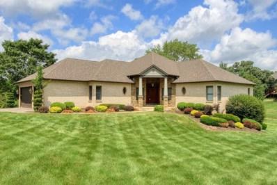 3820 Prairie Drive, Spring Grove, IL 60081 - #: 10595223