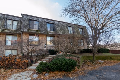 1718 Northfield Square UNIT D, Northfield, IL 60093 - #: 10595447