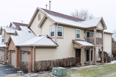 139 OLD OAK Court UNIT 139, Buffalo Grove, IL  - #: 10596143