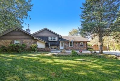 2705 Hobson Road, Downers Grove, IL 60516 - #: 10596165
