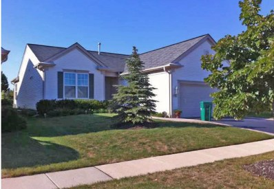 13601 Windy Prairie Drive, Huntley, IL 60142 - #: 10597325