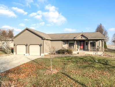 111 Melissa Drive, Lexington, IL 61753 - #: 10599427
