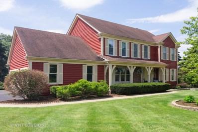 23907 W Lancaster Court, Deer Park, IL 60010 - #: 10599626
