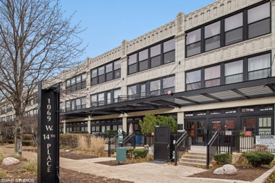 1069 W 14th Place UNIT 332, Chicago, IL 60608 - #: 10599845