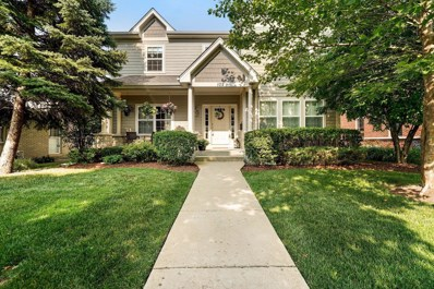 102 N Grace Avenue, Park Ridge, IL 60068 - #: 10600002
