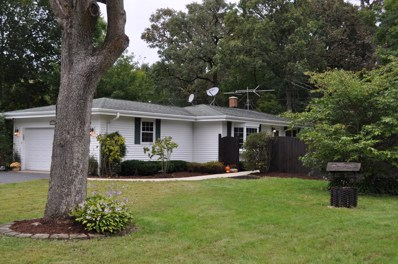 204 Kohl Avenue, Spring Grove, IL 60081 - #: 10601223