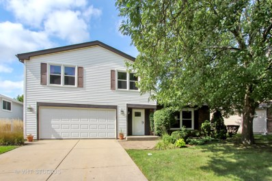 916 Thornton Lane, Buffalo Grove, IL 60089 - #: 10601236