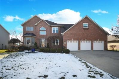 24221 Merlot Lane, Plainfield, IL 60586 - #: 10601534