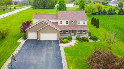 2998 E 2360th Road, Marseilles, IL 61341 - #: 10601883