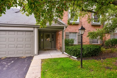 1590 Stonehill Court UNIT D, Wheaton, IL 60189 - #: 10602435