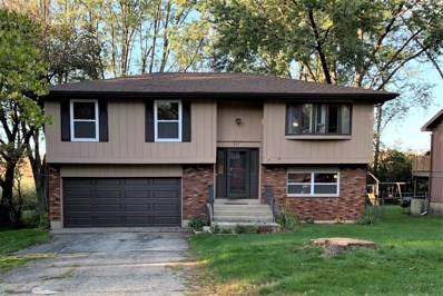 217 Plum Street, Lake In The Hills, IL 60156 - #: 10603895