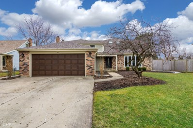 411 Thornapple Lane, Libertyville, IL 60048 - #: 10603982