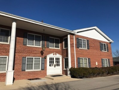 2816 DUNDEE Road UNIT 6A, Northbrook, IL 60062 - #: 10604366