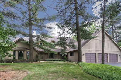 4009 MEANDERING Way, Crystal Lake, IL 60014 - #: 10605421