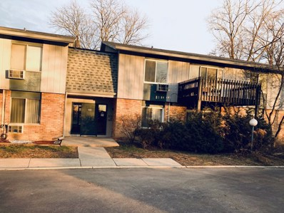 928 E Old Willow Road UNIT 204, Prospect Heights, IL 60070 - #: 10606109