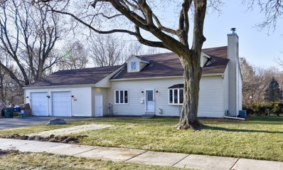 520 S Hubbard Street, Algonquin, IL 60102 - #: 10606658