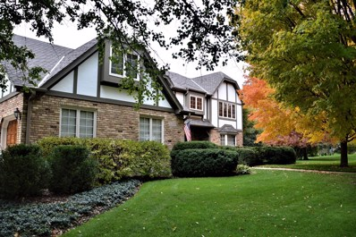 5930 Hillcrest Court, Downers Grove, IL 60516 - #: 10606793