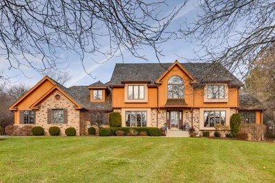 6515 High Meadow Court, Long Grove, IL 60047 - #: 10606948