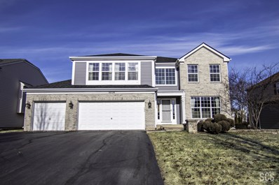 10724 Allegheny Pass, Huntley, IL 60142 - #: 10607003