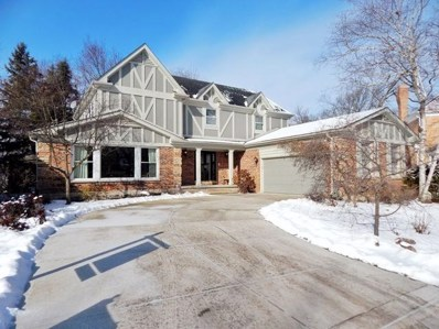 1S790 Lakewood Lane, Wheaton, IL 60189 - #: 10607093