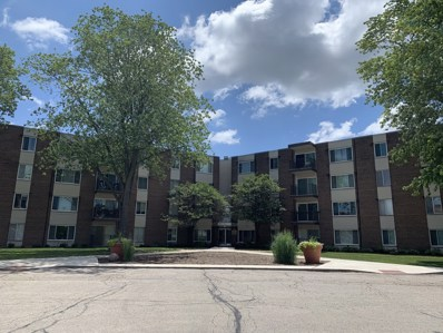 140 W Wood Street UNIT 321, Palatine, IL 60067 - #: 10607906