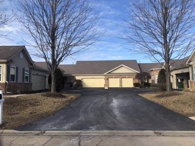 21312 W Conifer Drive, Plainfield, IL 60544 - #: 10607948