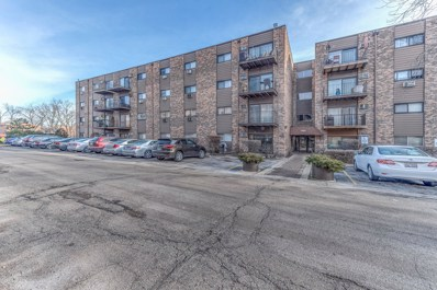 8894 Knight Avenue UNIT 302, Des Plaines, IL 60016 - #: 10608500